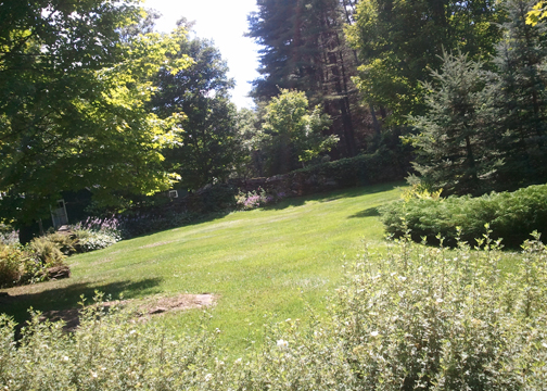 Vermont House for Sale