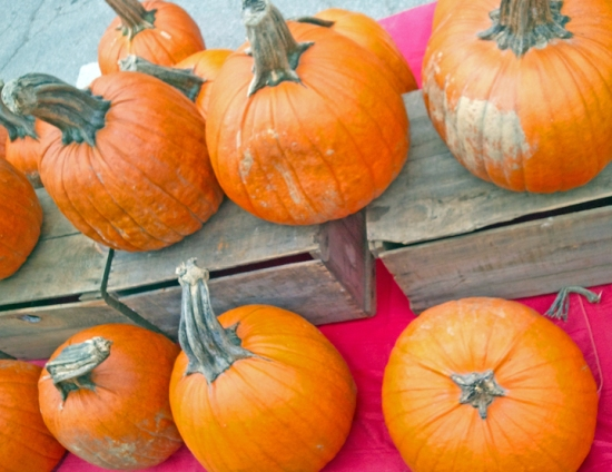 Pumpkins at Capital City Farmers Market Vermont