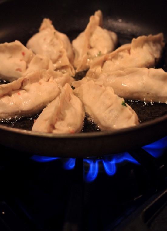 searing potstickers