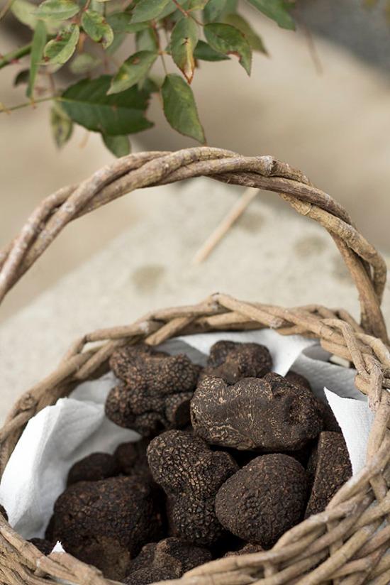 truffle dinner_41